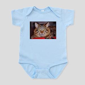 Maine-Coone Cat Infant Bodysuit