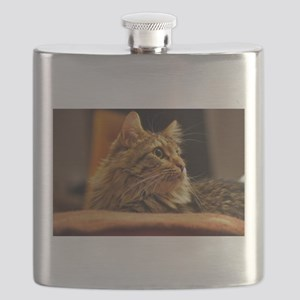 Cat ginger Flask