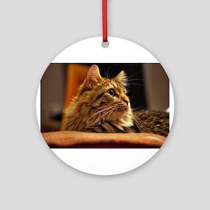 Cat ginger Ornament (Round)