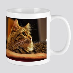 Cat ginger Mug