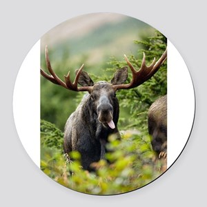 Mr Moose Sticking Tongue Out Round Car Magnet