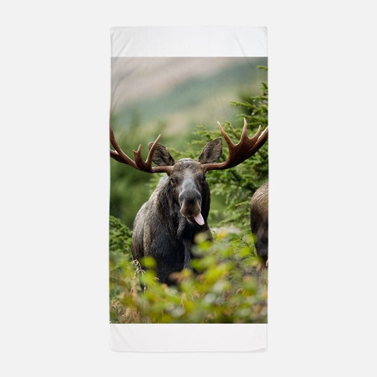 Mr Moose Sticking Tongue Out Beach Towel