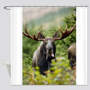 Mr Moose Sticking Tongue Out Shower Curtain