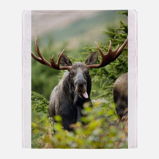 Mr Moose Sticking Tongue Out Throw Blanket