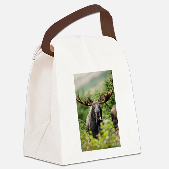 Mr Moose Sticking Tongue Out Canvas Lunch Bag