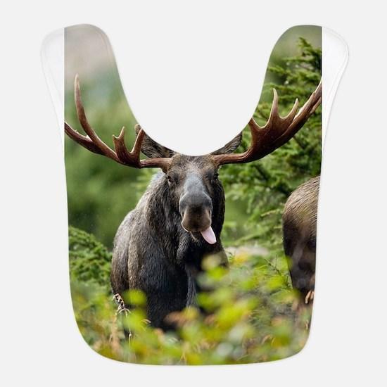Mr Moose Sticking Tongue Out Bib