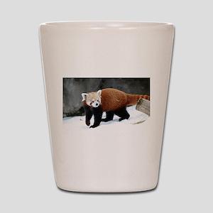 Red Panda Shot Glass