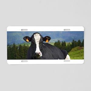 Holstein cow Aluminum License Plate
