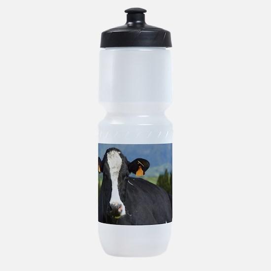 Holstein cow Sports Bottle