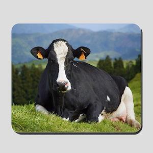 Holstein cow Mousepad