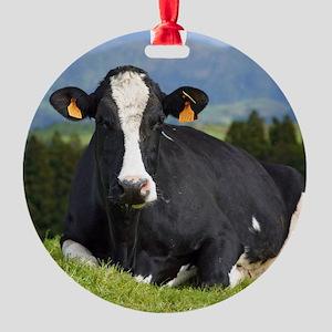 Holstein cow Ornament