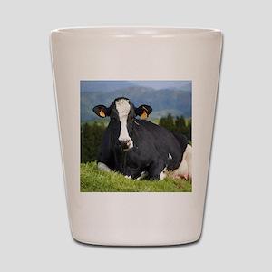 Holstein cow Shot Glass