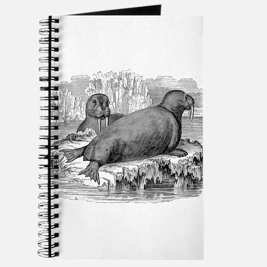 Unique Walruses Journal