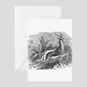Vintage Antelope Illustration - 1800s Gazelle Gree