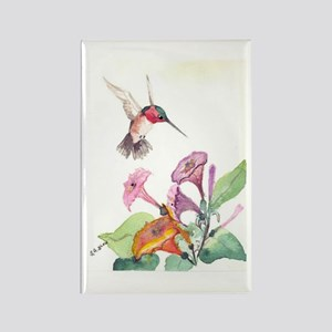 Adorable Hummers Rectangle Magnet