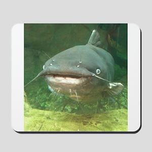 Curious Catfish Mousepad