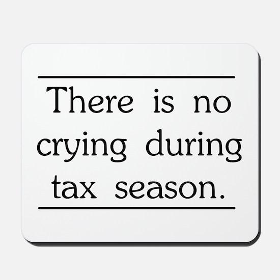 No crying during tax season Mousepad