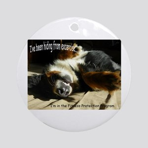 Fitness Protection Program Ornament (Round)