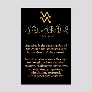 Aquarius Mini Poster Print
