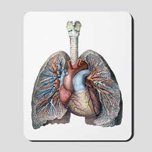 Human Anatomy Heart and Lungs Mousepad