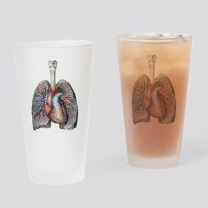 Human Anatomy Heart and Lungs Drinking Glass
