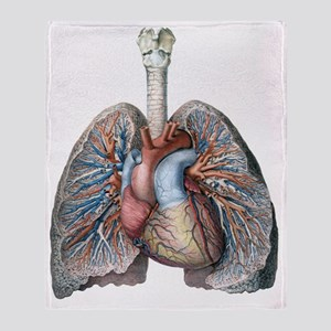 Human Anatomy Heart and Lungs Throw Blanket