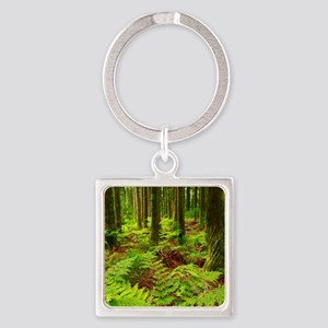 Ferns in the forest Keychains