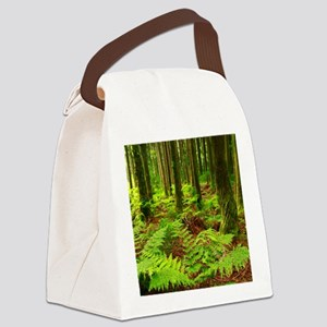 Ferns in the forest Canvas Lunch Bag