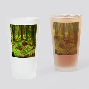 Ferns in the forest Drinking Glass