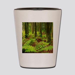 Ferns in the forest Shot Glass