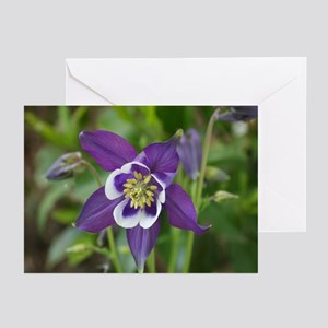 Purple Columbine Greeting Cards (Pk of 10)