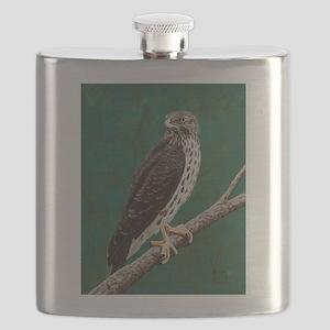 Cooper's Hawk: Flask