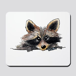 Pocket Raccoon Mousepad