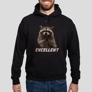 Excellent Evil Plotting Raccoon Hoodie