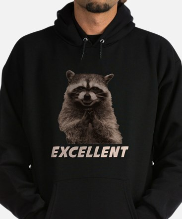 Excellent Evil Plotting Raccoon Hoodie