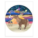 X-Star-Shetland Pony Small Poster