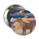 X-Star-Shetland Pony 2.25