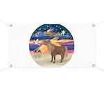 X-Star-Shetland Pony Banner