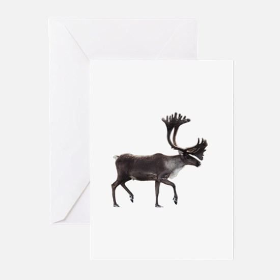 caribou Greeting Cards
