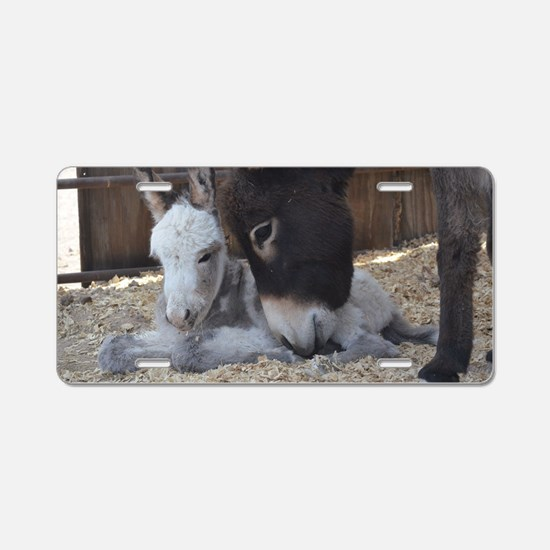 Eeyore and Angel Aluminum License Plate