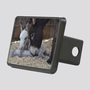 Eeyore and Angel Rectangular Hitch Cover