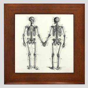 Skeletons Framed Tile
