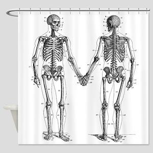 Anatomy Shower Curtains