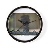 Emu Wall Clocks