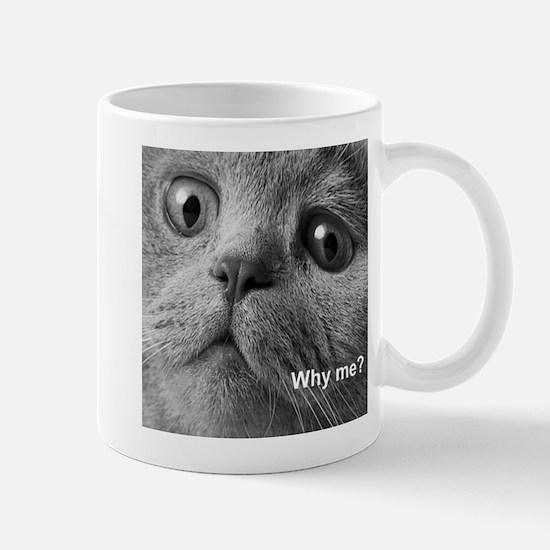 Why me cat. Mugs