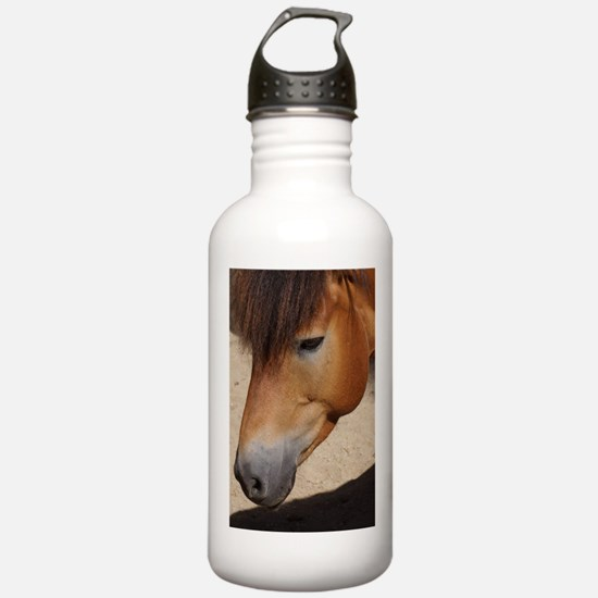 Funny Red cloudy sunrise Water Bottle