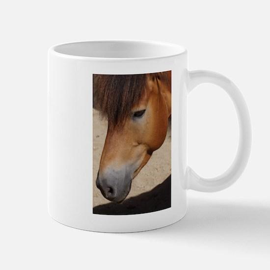 Wonderful Horse Animal Mugs
