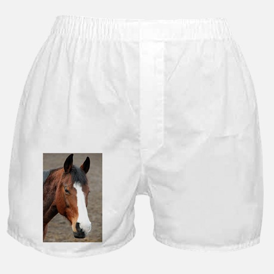 Unique Brush strokes Boxer Shorts