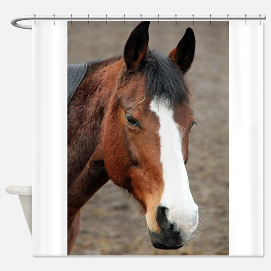 Cute Ride mare Shower Curtain