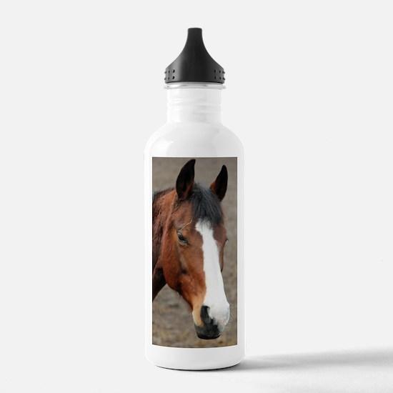 Cute Horse theme Sports Water Bottle
